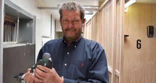 Paul Geens - Prijswinnaar Duiven - (c) Noordernieuws.be HDB_3605u