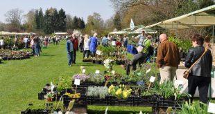 Plantendag voorjaar Arboretum Kalmthout