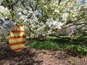 plantendag voorjaar Arboretum Kalmthout2