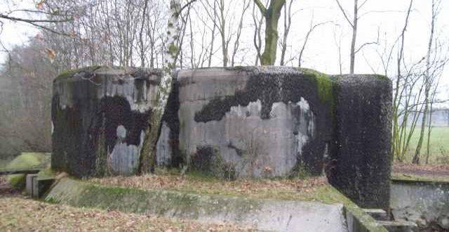 Bunker (be)zoekt ..