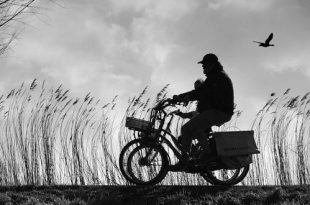 Wanneer mogen fietsers wel en niet op de rijbaan fietsen