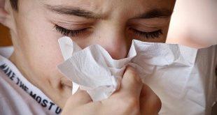 Maak een einde aan de hypoallergene mythe