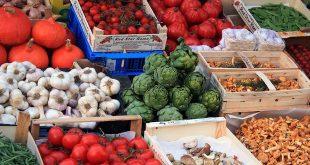 Boerenmarkt Loenhout - Markt Amandina 2019
