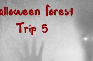 Jaag mensen de stuipen op het lijf bij de Halloween Forest Trip!