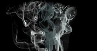 Rookmelders te koop