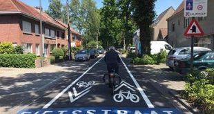 Tweede fietsstraat van Rozemieke tot Warandalei