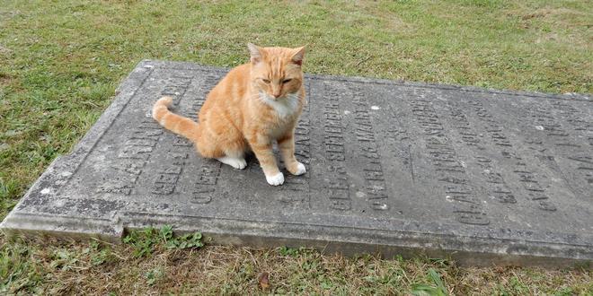 Eenrichtingsverkeer rond begraafplaats