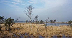 Groenrand streeft naar nationaal park 'De Voorkempen'3