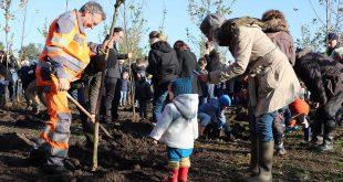 181 nieuwe bomen in Kalmthouts geboortebos