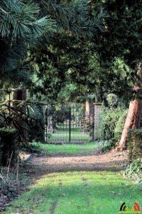 153 Arboretum Kalmthout - Miss Hamamelis verkiezing 2020 - (c) Noordernieuws.be - 51