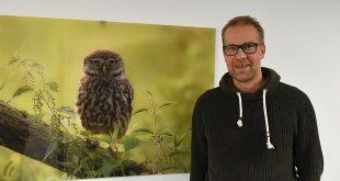 Beroep Glenn Vermeersch - Fotograaf - Vogelmonitoring Antwerpen