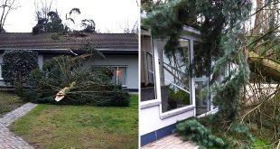 Essen - Storm Dennis - Boom waait om schade aan woning