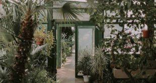 Essense tuincentra en doe-het-zelfzaken zijn weer open