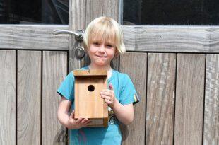 Nelles Luyten verrast klasgenootjes met bouwpakket vogelhuisje - Essen