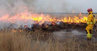 Algemeen vuur- en rookverbod natuurgebieden in provincie Antwerpen
