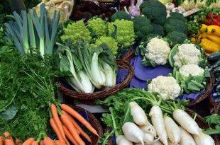 Opnieuw wekelijkse markt in Kalmthout
