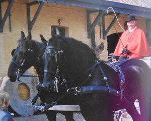 Cyriel Van Oers - Paardenmenner - HDB_1444