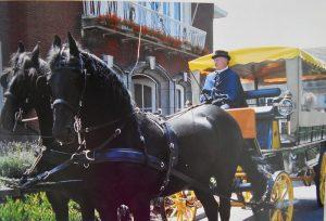Cyriel Van Oers - Paardenmenner - HDB_1451s