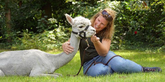 Tine van Wezel - Beroep - Alpaca's - DSC07594u75
