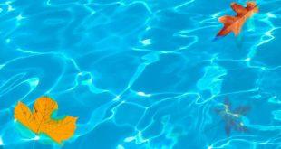Hoe je zwembad klaarmaken voor de herfst