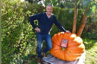 Patrick Vandoren wint de Howard Dill Award - Best looking Pumpkin - Belgisch kampioenschap Pompoenwegen - (c) Noordernieuws.be 2020 - HDB_2383u70