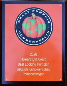 Patrick Vandoren wint de Howard Dill Award voor mooiste pompoen - Best looking Pumpkin - Belgisch kampioenschap Pompoenwegen - (c) Noordernieuws.be 2020 - HDB_2375