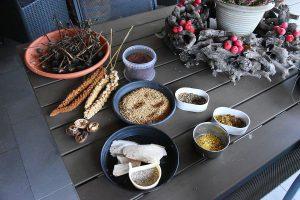 Dirk De Rycke vogelliefhebber - Hobby vogels - Natuurlijke zaden, voer en gras