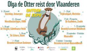 Olga Otter reist door Vlaanderen2