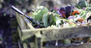 Gratis online compostcursus op 14, 20 of 29 april