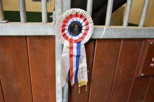 Gerard Rijper - Paardenmenner - Prijzen
