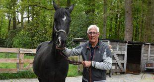 Gerard Rijper - Paardenmenner