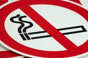 Burgemeesters Grenspark Kalmthoutse Heide voeren samen rookverbod in