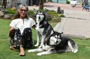 Christel Nelen - Hobby honden - Siberische Husky en Alaskan Malamute