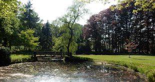 Respijt voor bomen Kloostertuin