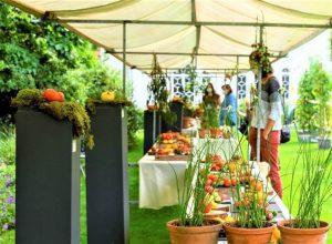 Tomatenfestival presenteert eigen praline